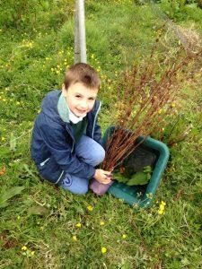 gardening june 025